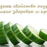 Полезные свойства огурца для вашего здоровья и красоты